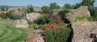 Perennials with Boulders